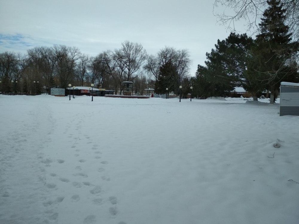 Камышане считают, что в этом году слишком рано завершен сезон на катке в центральном городском парке