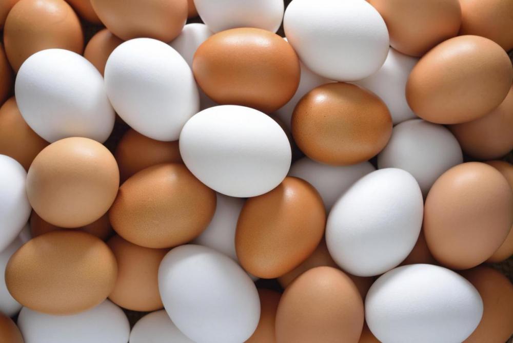 Яйца в Камышине долго «держались», но перед Новым годом подорожали