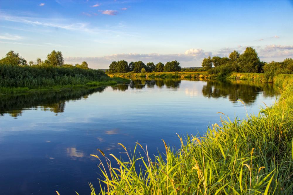 Шестилетний мальчик утонул 9 июня в реке