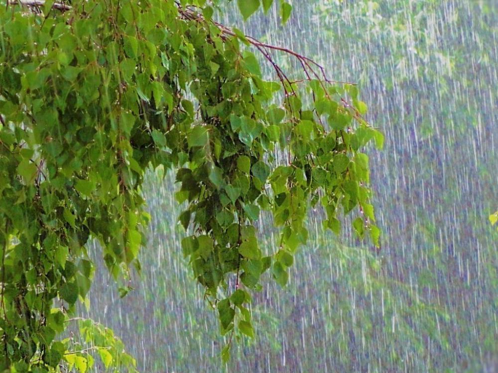ГУ МЧС распространило предупреждение о надвигающейся буре с ливнями и градом, в том числе в Камышине