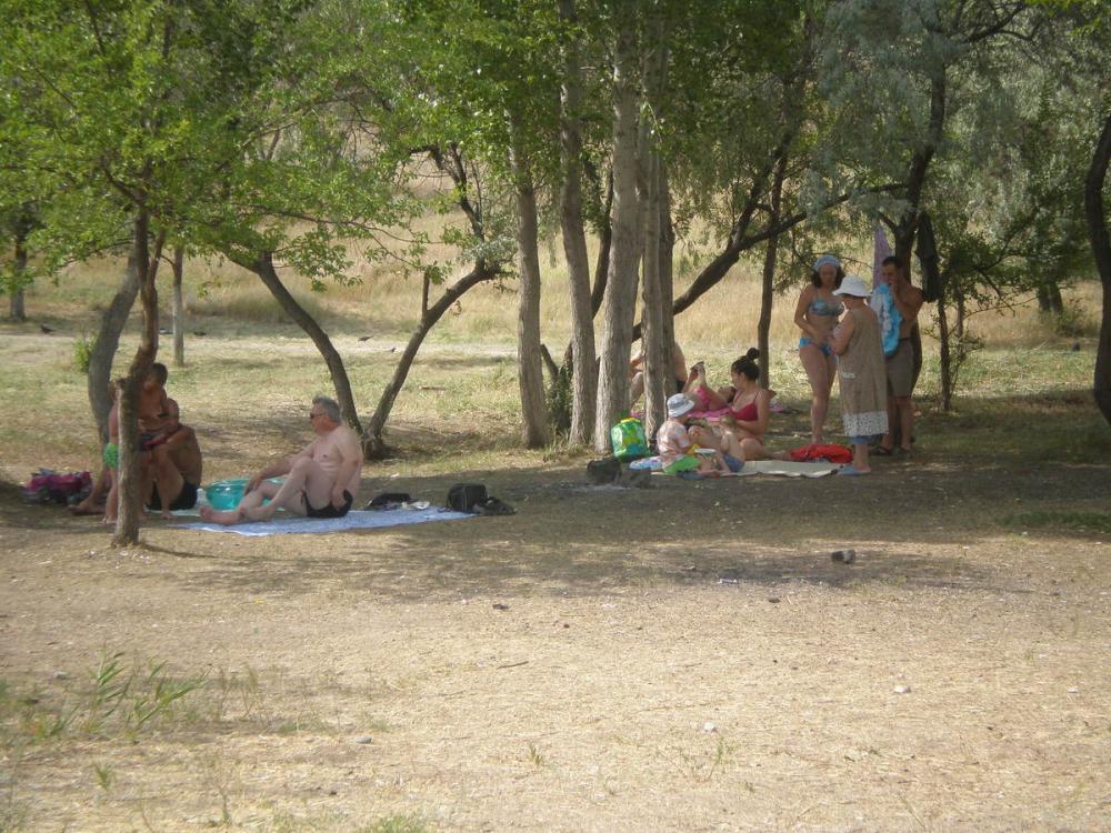 В Камышине в местах купания горожан сервис сводится, в основном, к тряпочке на земле