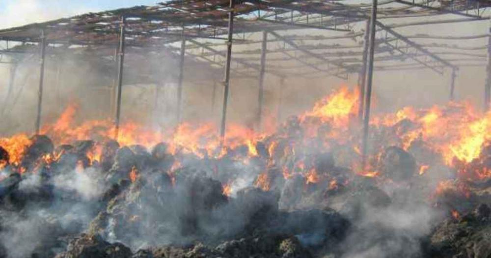 По ту сторону Камышина сгорело 100 тонн сена и деревянные постройки