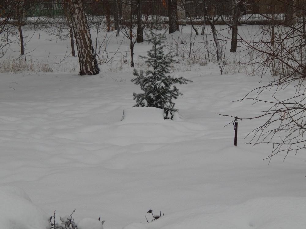 Памятную плиту в камышинском парке Комсомольцев-добровольцев заметает снегом