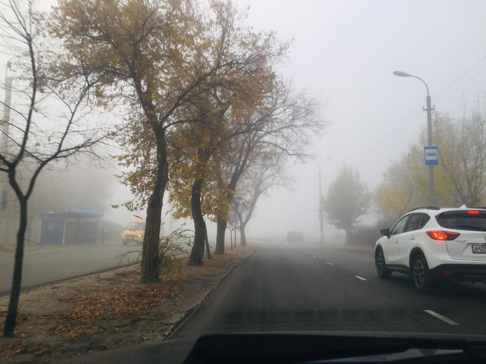 Густой туман окутал Камышин