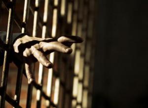 В Камышине двум водителям грозит лишение свободы до 2-х лет