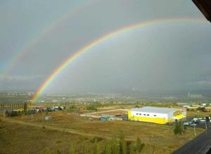 Творческие пользователи соцсетей из Камышина создали оригинальную коллекцию радуг  после вчерашнего дождя