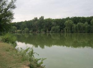 Из пруда водолазы подняли тело утонувшей восьмиклассницы