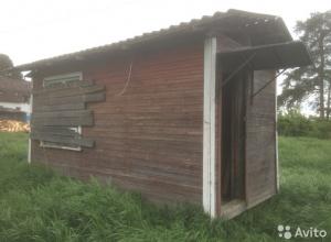 Две криминальные истории с хранением наркотиков расследуют камышинские полицейские