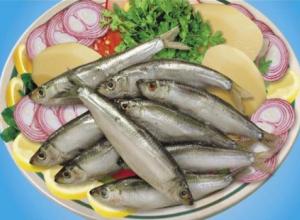 Астраханский губернатор призвал рыбаков сосредоточиться на кильке