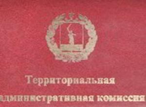 За что административная комиссия Камышина штрафовала горожан в первом полугодии