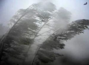 ГУ МЧС по Волгоградской области распространило штормовое предупреждение на 15-16 июля