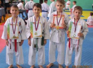 Юные каратисты из Камышина привезли призовые места с открытого первенства WKF