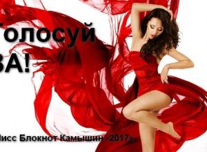 Стартовало голосование в конкурсе «Мисс Камышин -2017»