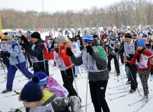 «Лыжня России» переезжает из Волгограда в Камышинский район