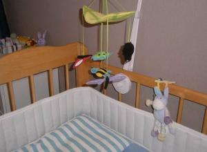 Стали известны обстоятельства жизни убившей новорожденного сына воспитательницы, - «Блокнот Волгограда»