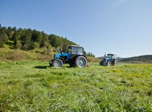 В Камышине сельскохозяйственники станут плательщиками НДС