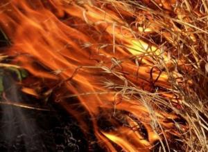 В Камышинском районе степной пожар испепелил почти 4 гектара