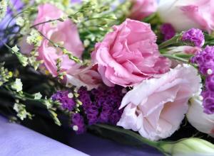Страхование ОСАГО от индивидуального предпринимателя Натальи Андреевой:  «Милые женщины, пусть в вашей жизни начнется сплошная полоса удач!»