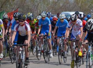 Камышане в числе призеров в Чемпионате по велоспорту-шоссе