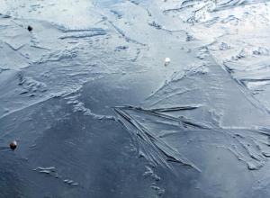 На реке Камышинке образовался тонкий ледяной покров
