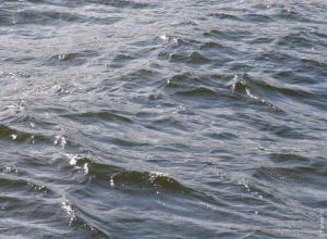 Родителей одного из утонувших в Хопре подростков готовят к опознанию тела