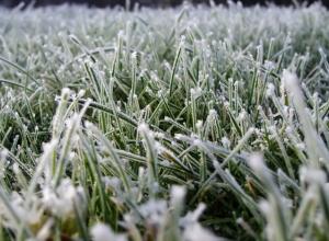 Синоптики обещают заморозки в воздухе и на почве