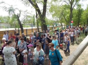 В Камышине в парке Комсомольцев-добровольцев полевая кухня собрала пятидесятиметровую очередь желающих отведать солдатской каши