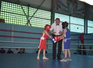 В школе №1 Камышина открылось первенство города по боксу среди юношей