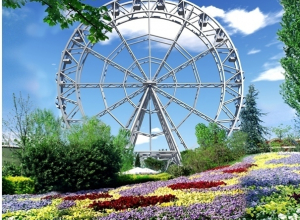 Скоро камышане смогут поехать в Волгоград покататься на колесе обозрения