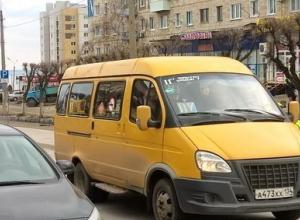 В Волгограде подорожал проезд в маршрутках, Камышин на очереди?