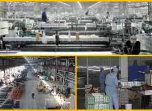 Любимый город ,  Камышинский текстиль и Камышинский опытный завод признаны лучшими в регионе