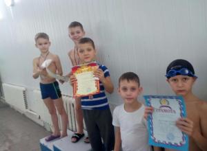 145 человек приняли участие в Новогоднем Кубке города Камышина и Первенстве по плаванию