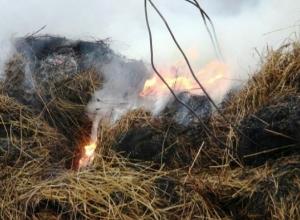 Под Камышином  в селе сгорело пол тонны сена