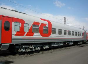 Англичанина, пытавшегося отобрать пистолет у российского полицейского, ссадили с поезда Москва-Волгоград