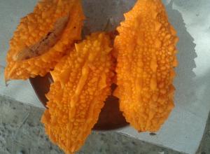 Камышинская экзотика шести соток: погляди-ка - момордика!