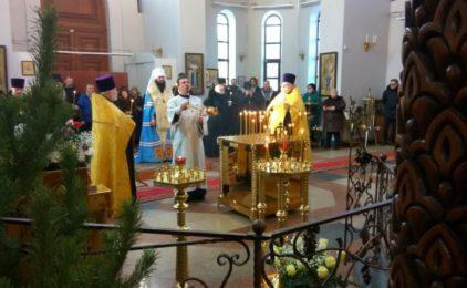 Митрополит Волгоградский и Камышинский Феодор обратился к православным христианам с Рождественским посланием