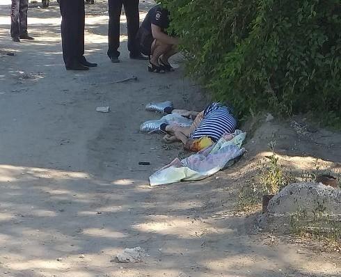 Полиция Камышина ищет свидетелей, которые слышали, как кричала сбитая мусоровозом женщина