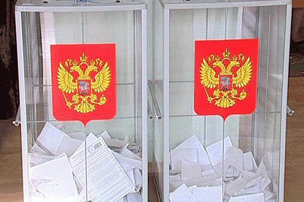 Обнародованы подробные предварительные данные, кто за кого проголосовал в Камышинском избирательном округе