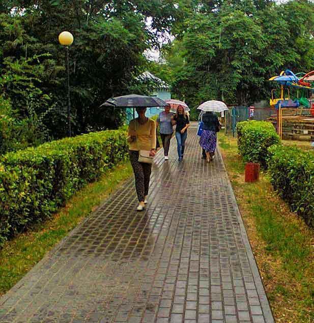 Синоптики вновь «наметили» в Камышине дождь
