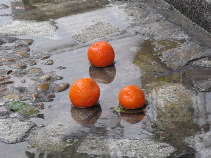 В Камышине на улице Тургенева лежит на боку грузовая «Газель», из-под которой выкатываются мандарины