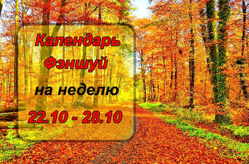 Вторник открыт для новых дел, а пятница грозит конфликтами: календарь-фэншуй  для Камышан