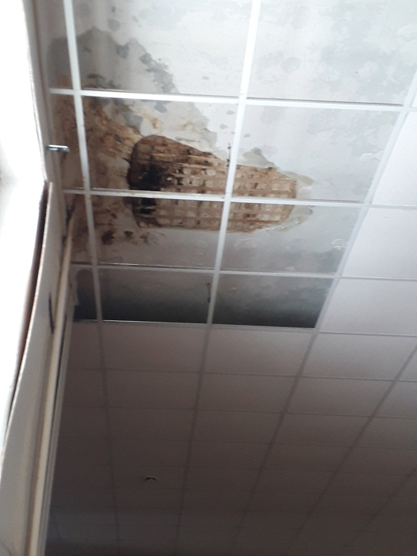 В Камышине в соцсетях родители предупреждают друг друга, что в школе их детям на голову может упасть потолок