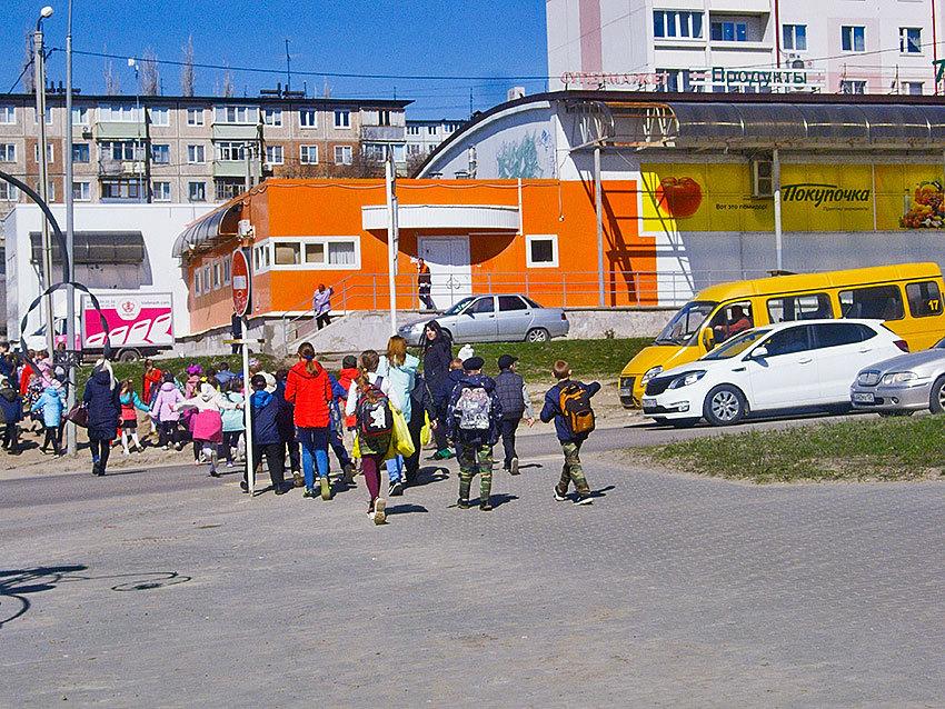 Активисты родительского комитета школы №16 переполошили родителей младшеклассников намерением отправить их одних через пол-Камышина