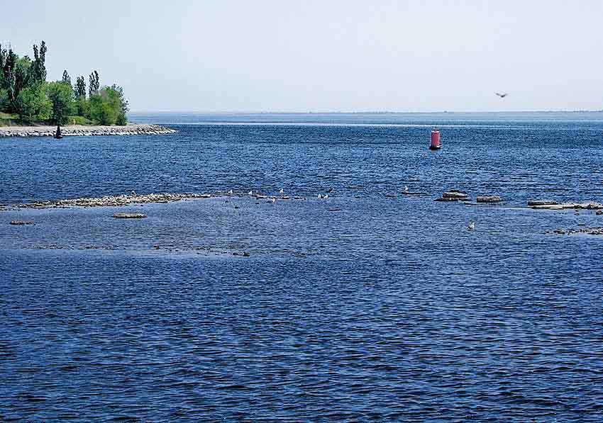Сегодня в Камышине энтузиасты всероссийского марафона зовут единомышленников объединиться и убрать берега Волги