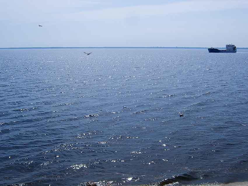 В РусГидро обещают, что Волга, в том числе у Камышина, больше мелеть не будет