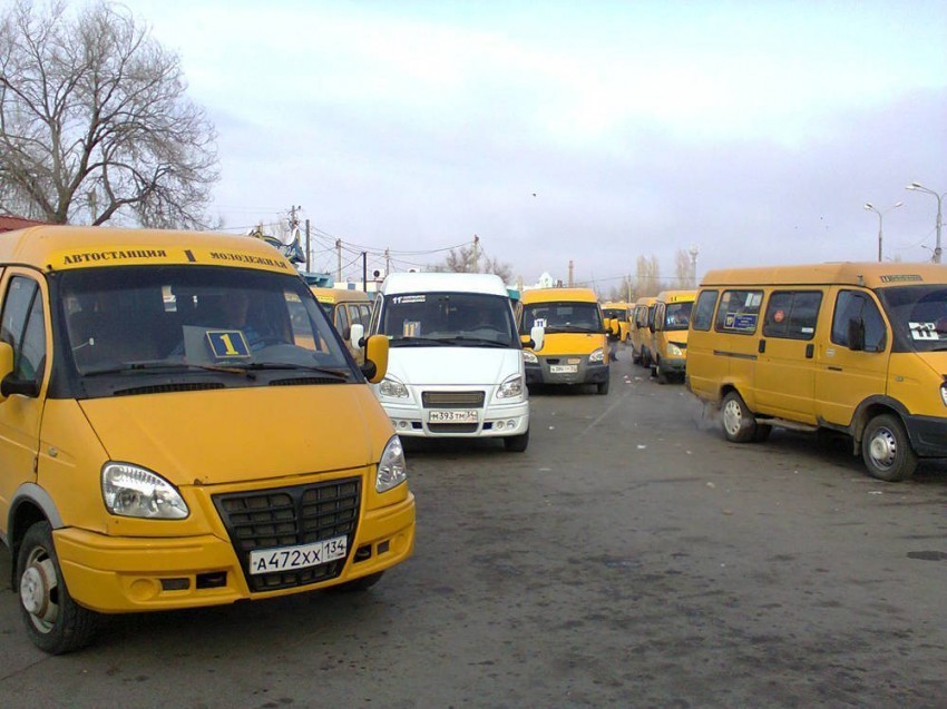 В Камышине пассажиров сажают в маршрутки «леваки», и всем контролирующим структурам, похоже, это нравится