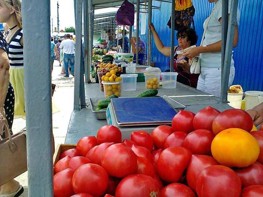 Камышане «отрываются» на местных помидорах