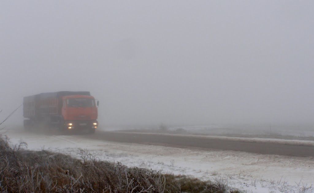 Вчера половина серьезных аварий в Волгоградской области произошла в Камышинском районе: участники ДТП «сносили» людей и деревья