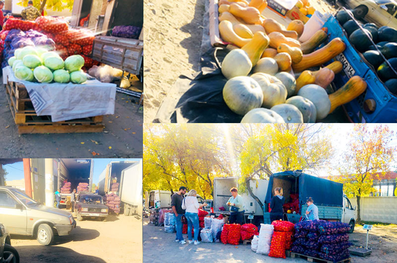 Пора запасаться к зиме: Камышине на рынке скупают все