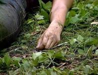 СУ СК России по Волгоградской области: О ходе расследование уголовного дела по факту убийства 16-летней студентки аграрного колледжа